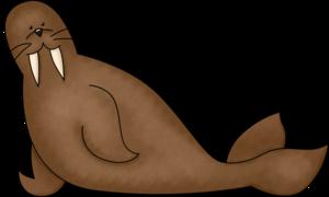 Walrus PNG Photos PNG Clip art