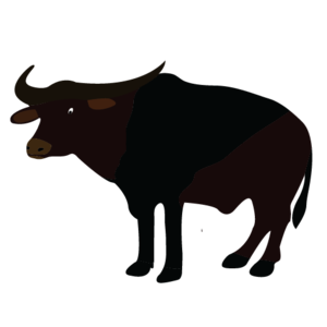 Water Buffalo PNG Picture PNG Clip art