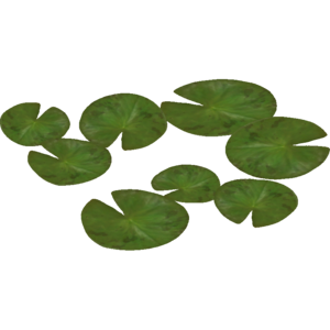 Water Lily PNG Pic PNG Clip art