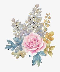 Watercolor Flowers PNG Download Image PNG Clip art