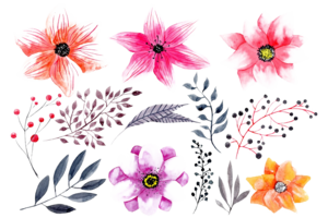 Watercolor Flowers PNG HD Photo PNG icons