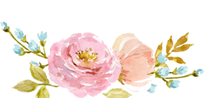 Watercolor Flowers PNG No Background PNG Clip art