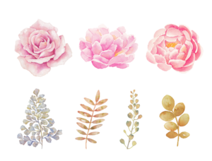Watercolor Flowers PNG Transparent Background PNG Clip art