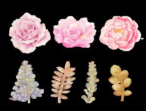 Watercolor Flowers PNG Transparent Background PNG Clip art