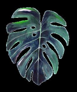 Watercolor Leaves PNG HD PNG Clip art