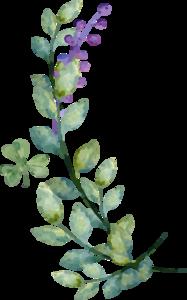 Watercolor Leaves PNG Image PNG Clip art