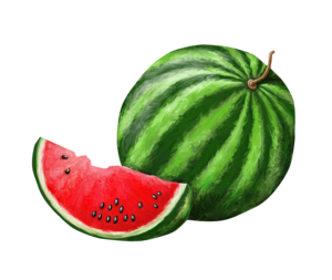 Watermelon PNG Background PNG Clip art