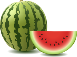 Watermelon PNG Image Free Download PNG Clip art