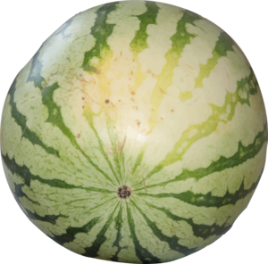 Watermelon PNG Transparent Photo PNG Clip art