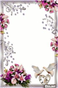 Wedding Frame PNG Transparent Background Clip art