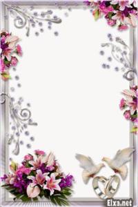 Wedding Frame PNG Transparent Background PNG Clip art