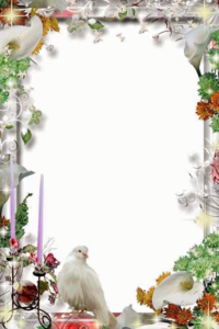 Wedding Frame PNG Transparent File PNG Clip art