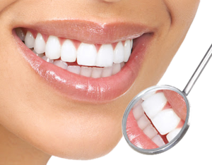 White Teeth Transparent Background PNG Clip art