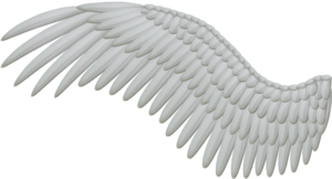 Wings PNG HD PNG Clip art