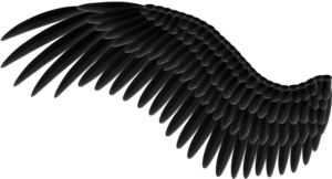 Wings PNG Pic PNG Clip art