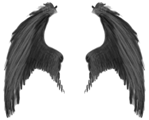 Wings PNG Transparent Image Clip art