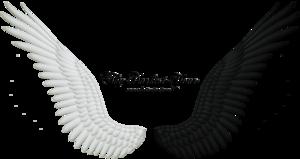 Wings Transparent PNG PNG Clip art