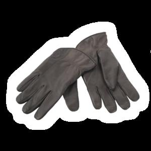 Winter Gloves Download PNG Image PNG Clip art
