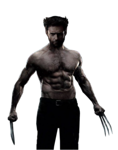 Wolverine PNG Image PNG Clip art