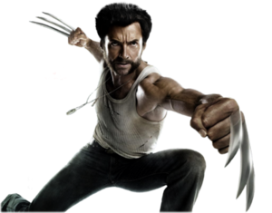Wolverine PNG Photos PNG Clip art