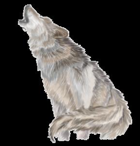 Wolves Howl PNG PNG Clip art