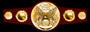 Wrestling Belt PNG Pic PNG Clip art