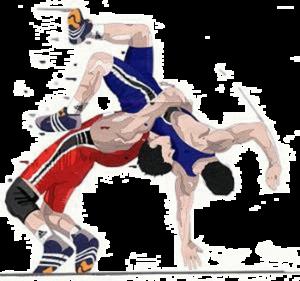 Wrestling PNG Photos PNG Clip art