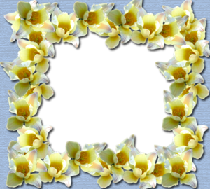 Yellow Border Frame PNG File PNG Clip art