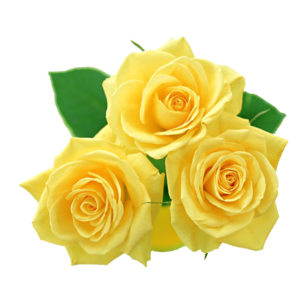 Yellow Flowers Bouquet PNG File PNG Clip art