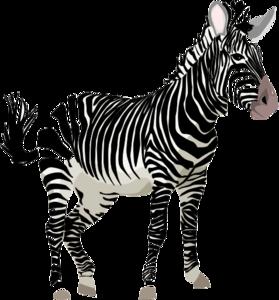 Zebra PNG HD Quality PNG Clip art