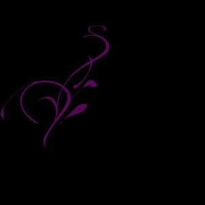 Aqua Scroll Ribbon Border icon png