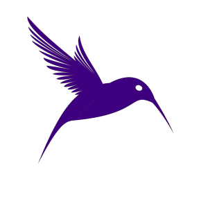 Xhumming Bird design