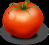 Tomato icon png