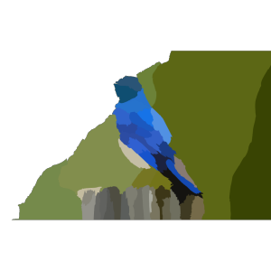 Mountain Blue Bird X icon png