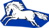 Running Horse 2 icon png
