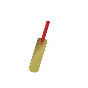 Cricket Bat icon png