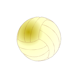 Volley-ball icon png