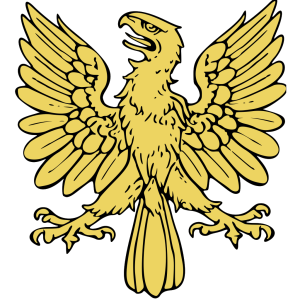 Soaring Eagle icon png
