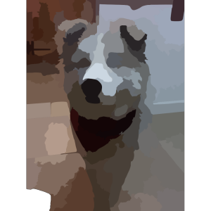 Blurred Pet Photo icon png