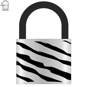 Padlock Zebra design