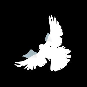 White Dove icon png