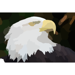 Eagle Ff F Ab B design