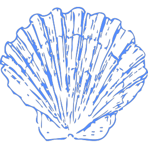 Shell Blue design