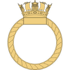 Caggles Ship S Badge icon png