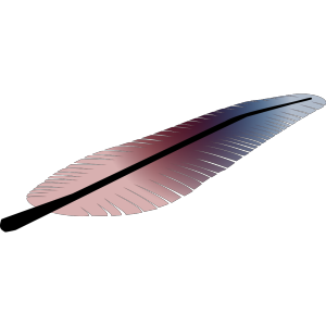 Colored Feather icon png