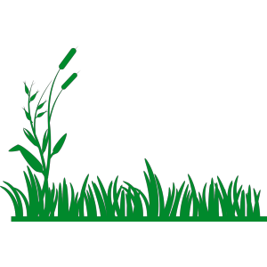 Grass Background design