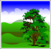 Sunny Spring With Blue Sky icon png