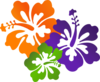 Flowers Roses icon png