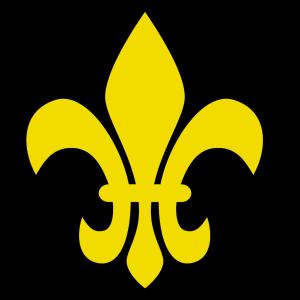 Brown Fleur De Lis icon png