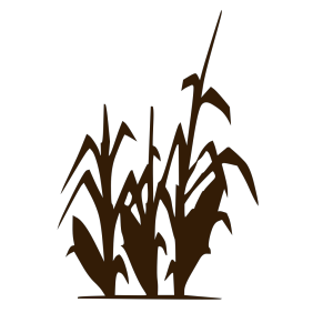 Darkbrowncorn icon png